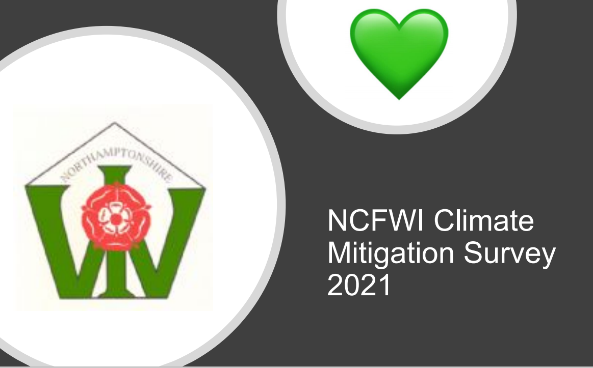 Results of 1st Climate Mitigation Survey 2021